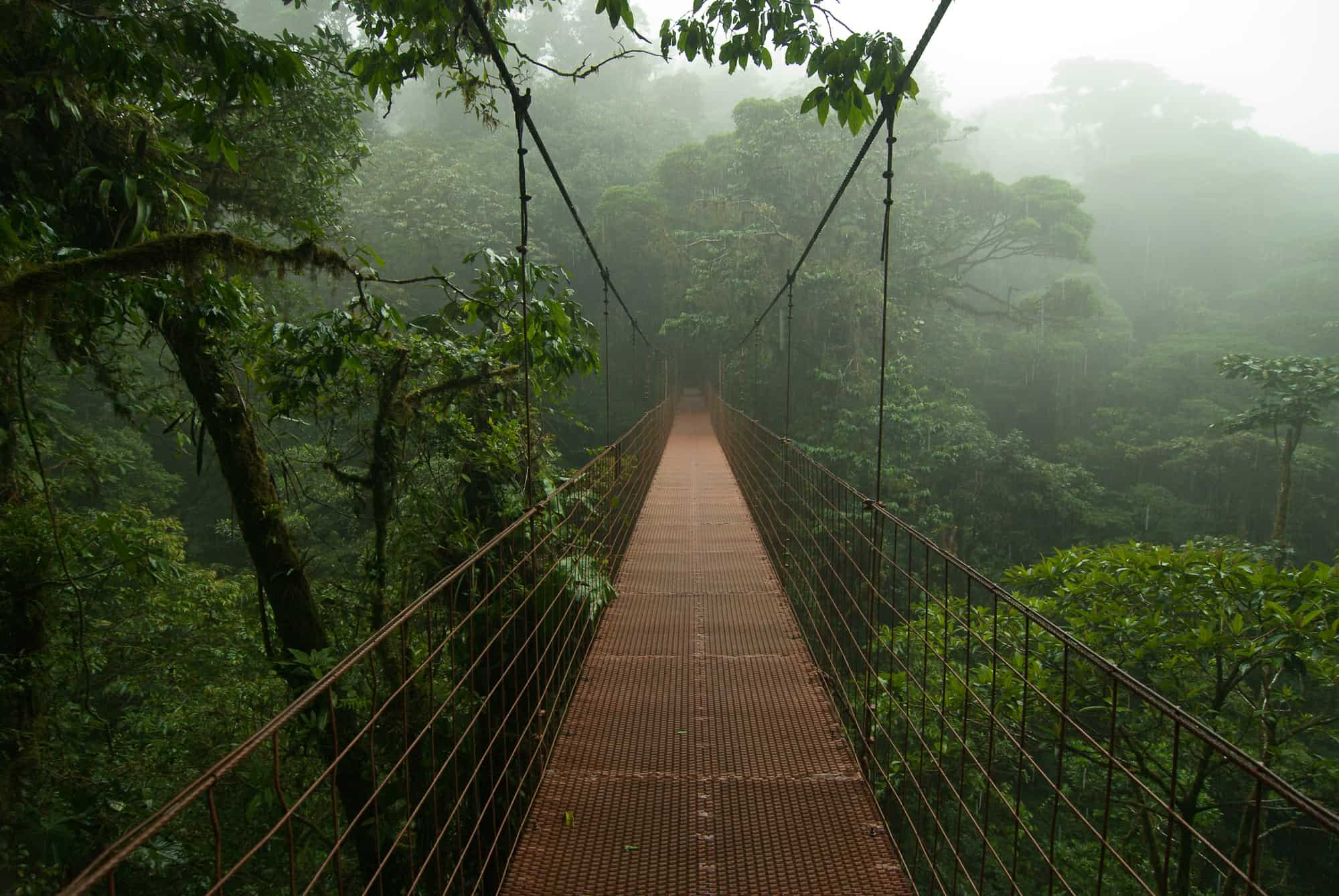 top destination monteverde cloud forest
