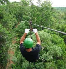 Jungle activities