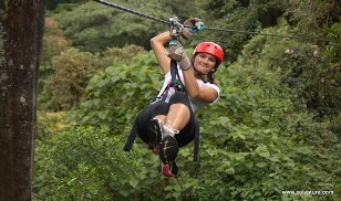 One day tour Monteverde Cloud Forest Experience Private