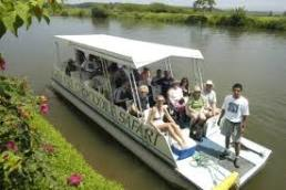 Crocodrile Tour Safari in Tarcoles River