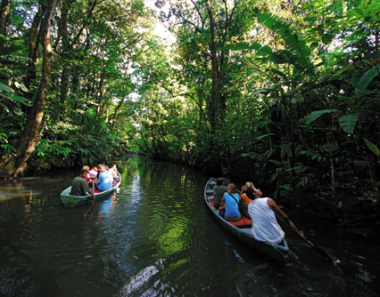 activities for  Kayak or boat to Mangroves in Manuel Antonio